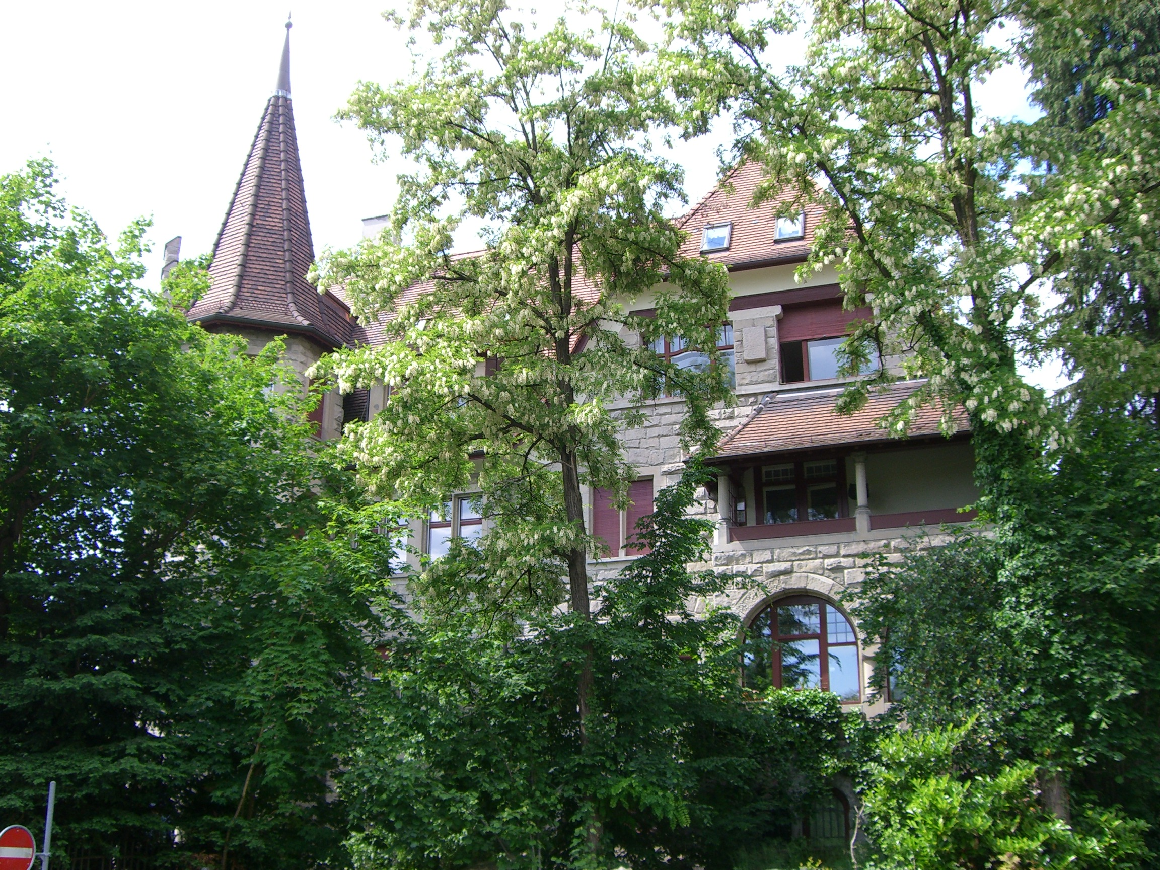 Mousson studihaus-2